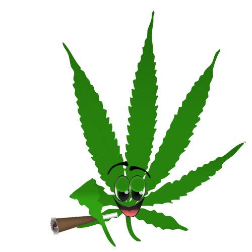 Leif the leaf